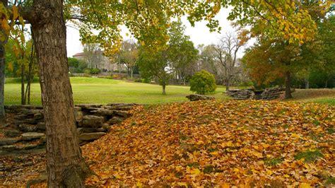 cheekwood botanical gardens and museum of in nashville