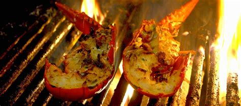 lobsters dragos seafood restaurant