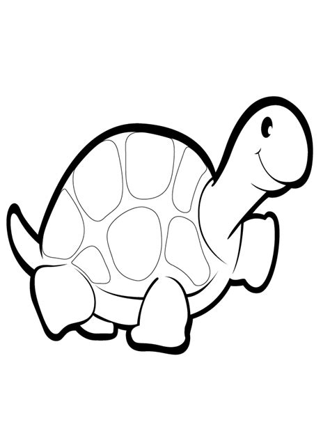 baby turtles coloring pages baby turtle coloring pages coloring home