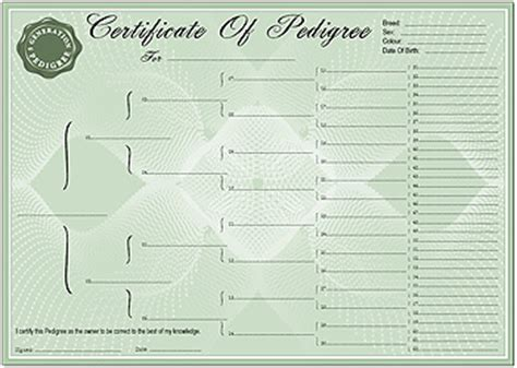 pedigree certificate template pedigree certificate forms 5 generation forms and
