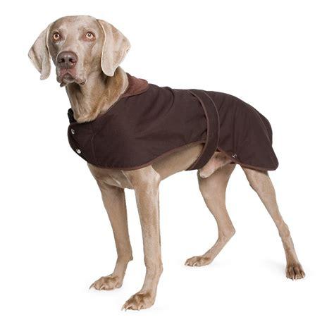 coated dogs ancol timberwolf wax coat big world