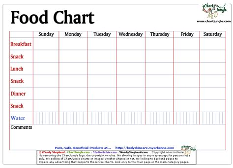 food and fluid chart template index of health