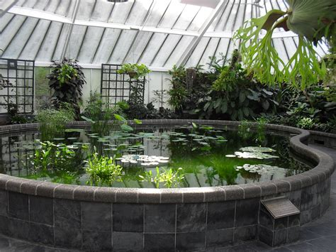 indoor pond greenhouse with a pond that ll keep the herons from