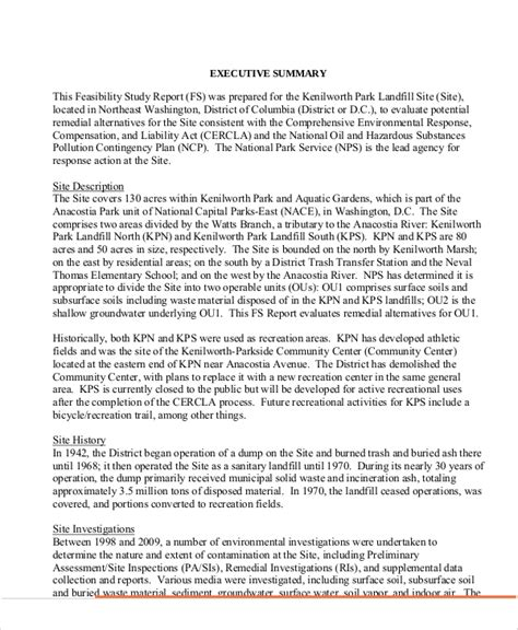 Environmental Report Writing by 11 Sle Feasibility Report Free Sle Exle Format