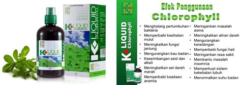 Suplemen Klorofil Obat Eksim Menggunakan Suplemen K Liquid Chlorophyll Dari