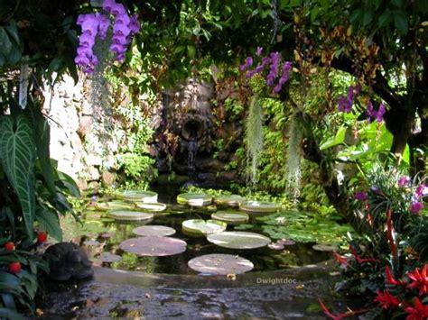 giardino botanico giardino botanico ischia immagini