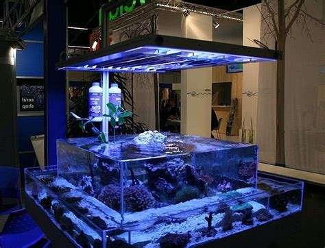 45 Creative and Cool Fish Tanks Ideas   Gallery   Gallery