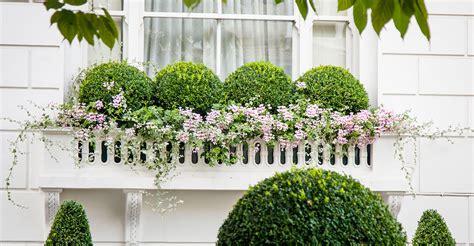 window boxes planters window boxes planters garden design garden