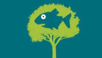 tree fish if fishes were allowed to swim shrey chheda