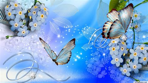 computer wallpaper pictures free download full screen desktop wallpaper free download http