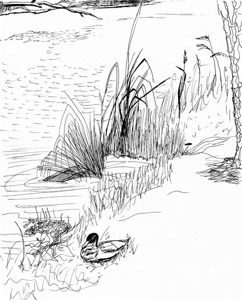 Mouse Pad Ponds Thn 2008 free coloring pages of tadpole pond