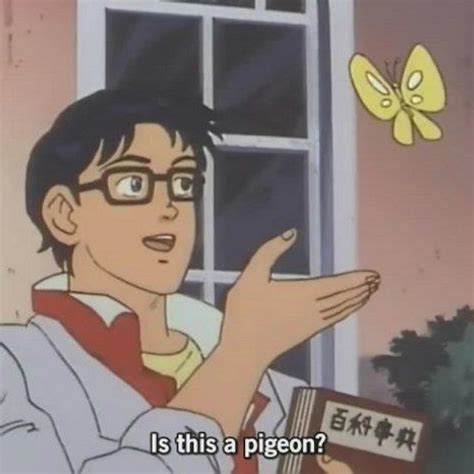 Is This a Pigeon?   Know Your Meme