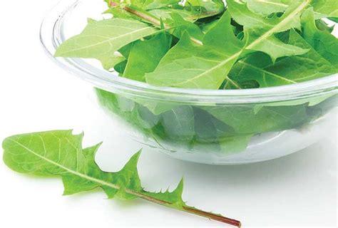 alimenti aiutano i reni erbe aiutano a depurare l organismo