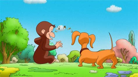 curious george swing into spring catch the fever quot curious george swings into spring quot dvd