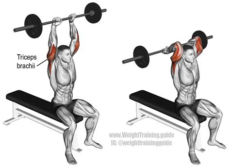 single bench dip 100 single bench dip strength equipment strength