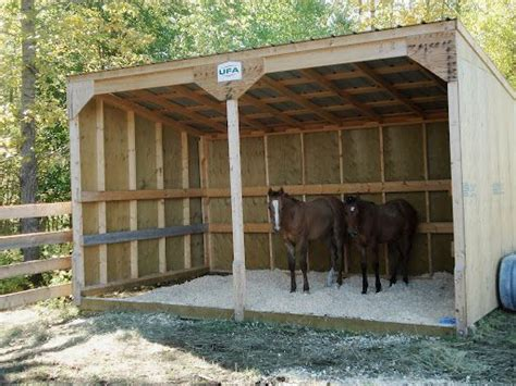 build  cheap goat shed zoros sheds horse