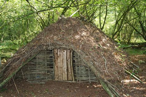 the shelter wilderness survival skills and bushcraft antics building