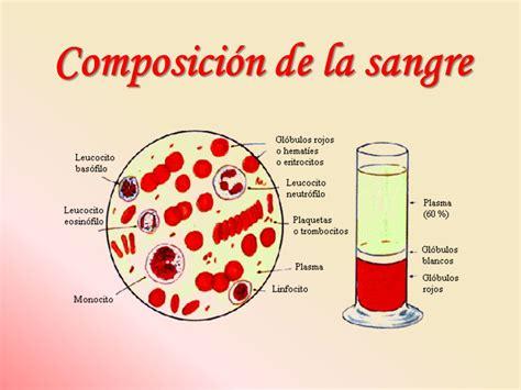 la sangre de los b0062xe6ao qu 237 mica de la sangre i gl 243 bulos rojos una presentaci 243 n de ppt video online descargar