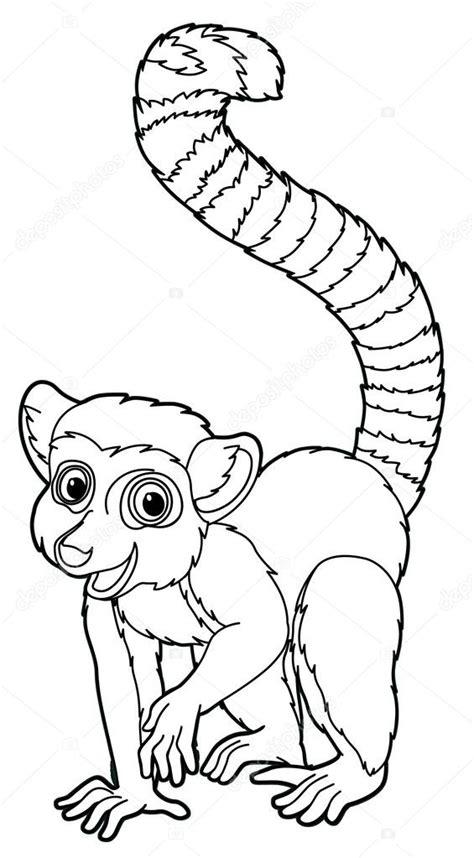 mouse lemur coloring page lemur colouring pages