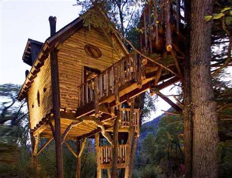colorado house plans tree houses for adults 40 pics