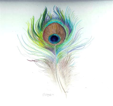 pretty peacock feather drawing creativefan peacock feather by shewhosoars on deviantart