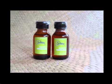 Aromatherapy Ruangan www jualaromatherapy jual aromatherapy oils ruangan