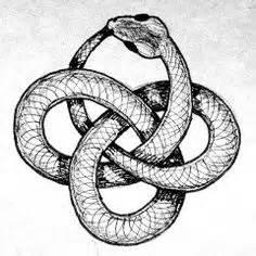 Infinity Snake Meaning On Ouroboros Tattoos And