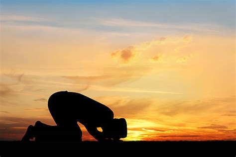 muslim prayer stock  pictures royalty