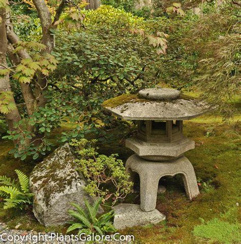 Uw Botanic Gardens Of Washington Botanic Gardens Purplebirdblog