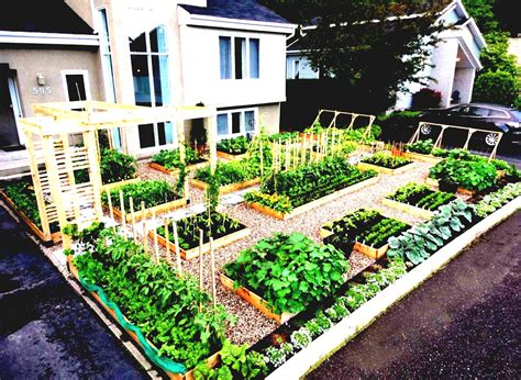 Gardening Ideas On A Budget Garden Cadagu Idea Small