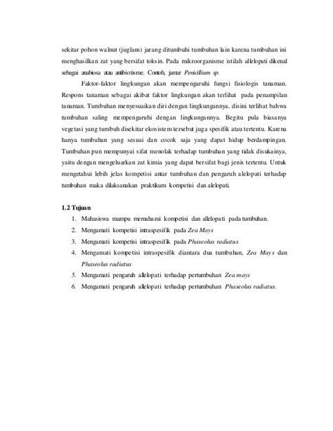 contoh laporan jagung laporan praktikum kompetensi dan allelopati