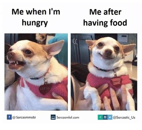 Me Me Me - me after me when i m hungry having food sarco us f