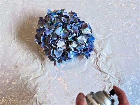 fiori secchi vendita fiori secchi ortensie fiori secchi seccare le ortensie