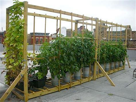 vegetable roof garden vegetable roof garden vertical home garden