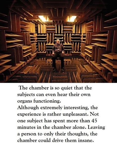 world s quietest room the world s quietest room random awesomeness