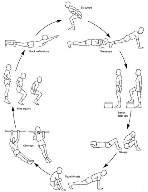 html layout exercises cardio trek toronto personal trainer combining circuit