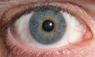 iris eye color file eye central heterochromia crop and lighter jpg