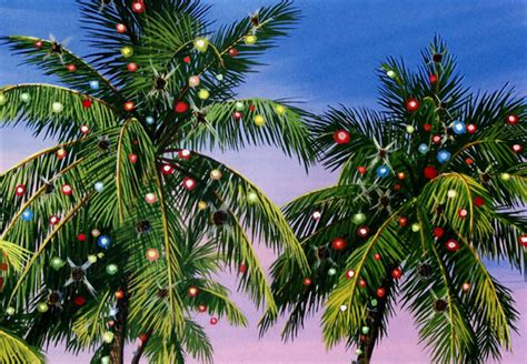 houses with christmas tree lites in palm springs palm tree lights warm weather card by farm studios