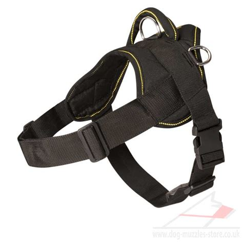 harnesses for large dogs best harness for pulling dogs breeds picture