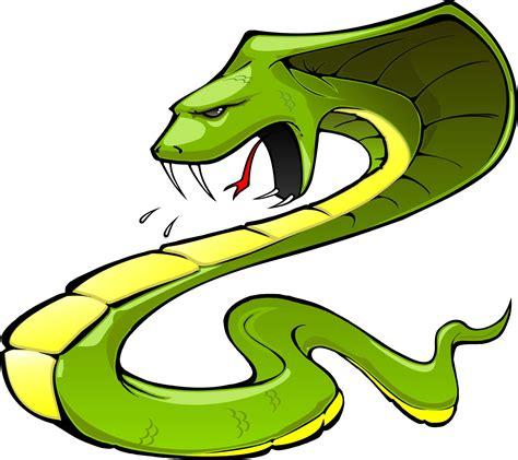 snake clipart snake black and white clip images