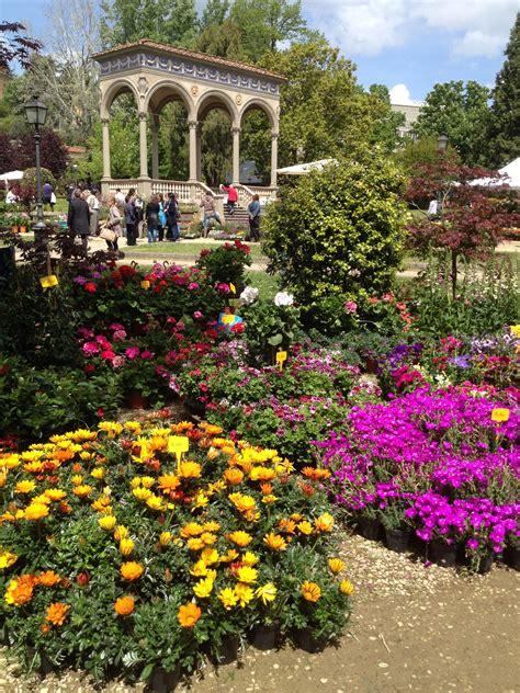 mostra dei fiori firenze primo maggio al giardino dell orticoltura in famiglia