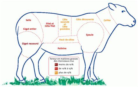 cuisiner une 駱aule d agneau dictionnaire de l agneau et du mouton
