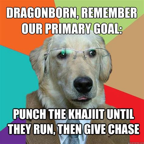 Dragonborn Meme - dragonborn remember our primary goal punch the khajiit