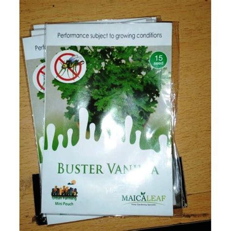 Jual Bibit Vanilla jual buster vanilla tanaman anti nyamuk 15s