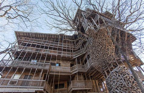 world s biggest tree house inside the world s biggest tree house fubiz media