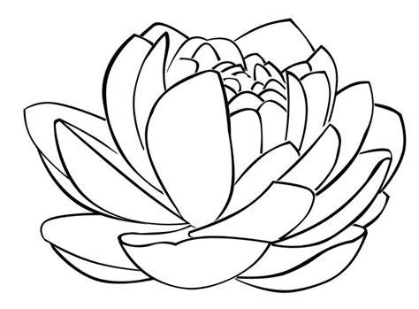 lotus flower templates clipart best
