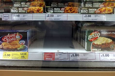 Beef Shelf by Findus Beef Lasagne Could Be 100 Shops Take