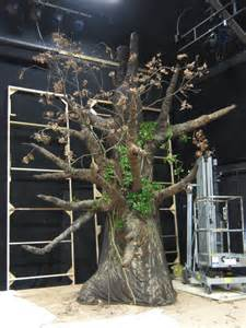 tree stage set design set design for play pinterest