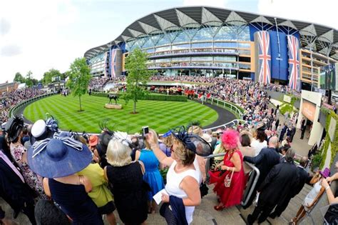 royal ascot 2015 which ticket should you buy get reading