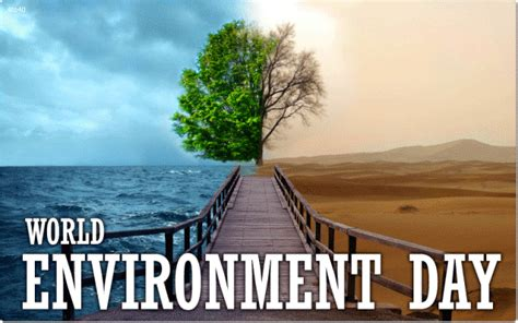 World Environment Day 2015 Focuses On Living Sustainably